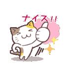 応援する猫、がんばる猫(個別スタンプ:20)