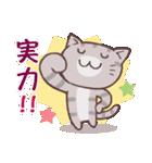 応援する猫、がんばる猫