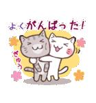 応援する猫、がんばる猫(個別スタンプ:38)