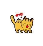 動くねこ!つしまやまねこ (絶滅危惧種猫)(個別スタンプ:4)