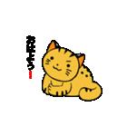 動くねこ!つしまやまねこ (絶滅危惧種猫)(個別スタンプ:7)