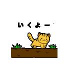 動くねこ!つしまやまねこ (絶滅危惧種猫)(個別スタンプ:8)