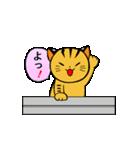 動くねこ!つしまやまねこ (絶滅危惧種猫)(個別スタンプ:12)