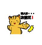 動くねこ!つしまやまねこ (絶滅危惧種猫)(個別スタンプ:23)
