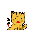 動くねこ!つしまやまねこ (絶滅危惧種猫)(個別スタンプ:24)