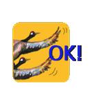 ピクチャートーク(個別スタンプ:02)