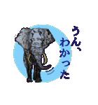 ピクチャートーク(個別スタンプ:03)
