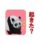 ピクチャートーク(個別スタンプ:05)