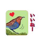 ピクチャートーク(個別スタンプ:09)
