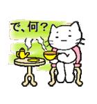白い猫の生活
