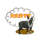 OK&NO版・イラストっぽい子犬2(個別スタンプ:05)