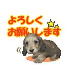 OK&NO版・イラストっぽい子犬2(個別スタンプ:07)