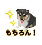 OK&NO版・イラストっぽい子犬2(個別スタンプ:10)