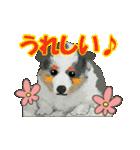 OK&NO版・イラストっぽい子犬2(個別スタンプ:19)