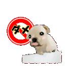 OK&NO版・イラストっぽい子犬2(個別スタンプ:22)