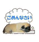 OK&NO版・イラストっぽい子犬2(個別スタンプ:24)