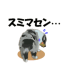 OK&NO版・イラストっぽい子犬2(個別スタンプ:25)