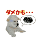 OK&NO版・イラストっぽい子犬2(個別スタンプ:27)