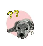 OK&NO版・イラストっぽい子犬2(個別スタンプ:33)
