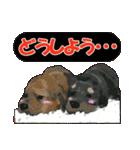 OK&NO版・イラストっぽい子犬2(個別スタンプ:36)