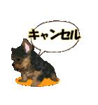 OK&NO版・イラストっぽい子犬2(個別スタンプ:40)