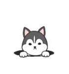 Puppy club(個別スタンプ:7)