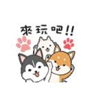 Puppy club(個別スタンプ:23)