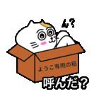 ようこ専用ヨウコが使うネコの名前スタンプ(個別スタンプ:08)