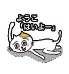 ようこ専用ヨウコが使うネコの名前スタンプ(個別スタンプ:19)