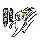 ようこ専用ヨウコが使うネコの名前スタンプ(個別スタンプ:26)