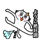 ようこ専用ヨウコが使うネコの名前スタンプ(個別スタンプ:28)