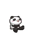 とにかくよく動くパンダ(個別スタンプ:13)