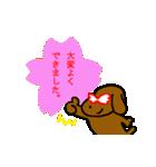 犬の先生スタンプ イヌのハナマル先生(個別スタンプ:01)