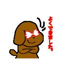 犬の先生スタンプ イヌのハナマル先生(個別スタンプ:02)