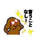 犬の先生スタンプ イヌのハナマル先生(個別スタンプ:15)