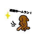 犬の先生スタンプ イヌのハナマル先生(個別スタンプ:21)