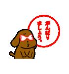 犬の先生スタンプ イヌのハナマル先生(個別スタンプ:34)