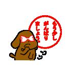 犬の先生スタンプ イヌのハナマル先生(個別スタンプ:35)