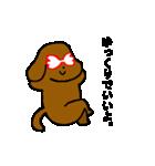 犬の先生スタンプ イヌのハナマル先生(個別スタンプ:37)