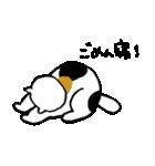 いじらしい猫ちゃん(個別スタンプ:02)