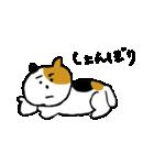 いじらしい猫ちゃん(個別スタンプ:14)