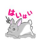 飼いウサろっぴ【ゴキゲン斜め編】(個別スタンプ:26)