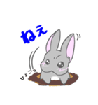 飼いウサろっぴ【ゴキゲン斜め編】(個別スタンプ:33)