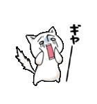 喜怒哀楽!表情がいっぱいのネコ