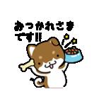 茶しばさん(個別スタンプ:02)
