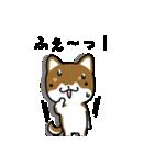 茶しばさん(個別スタンプ:03)