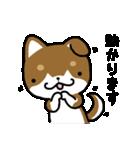 茶しばさん(個別スタンプ:09)