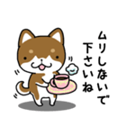 茶しばさん(個別スタンプ:19)