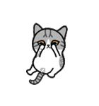 Little cotton candy cat(個別スタンプ:03)