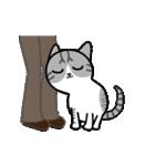 Little cotton candy cat(個別スタンプ:05)